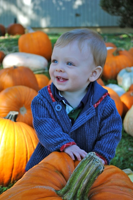 Child at the Pumpkin Patch